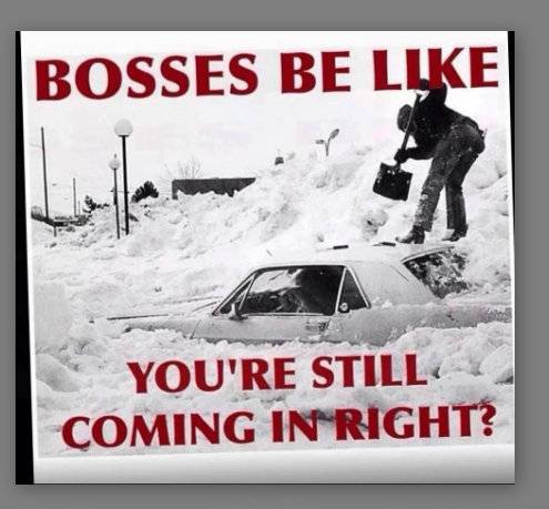 Nor' easter on the way? - Page 2 Bossjpg-PicasaPhotoViewer14201425339AM_zps4c7c13bc