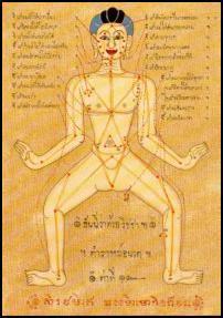 Les massages Thailandais Ener
