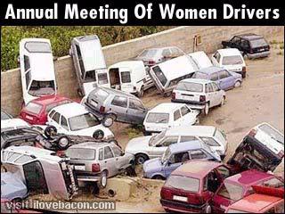 Funny Pics Womendriver