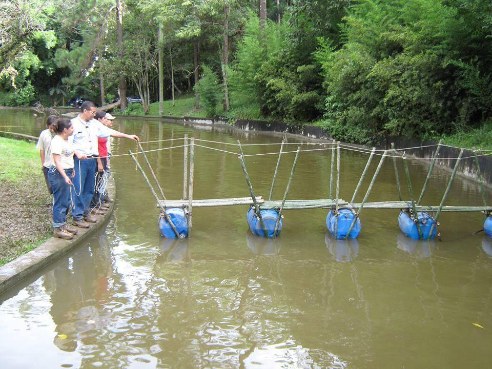 Pioneering - Bridges 968893_564214010302982_1698812592_n_zpsmwiqd6cl