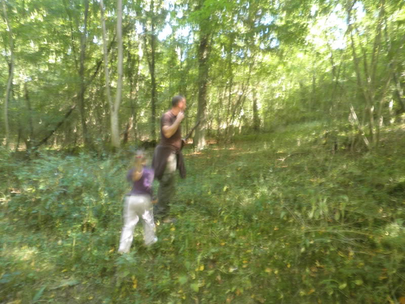 Fotos del bosque normando P9200242