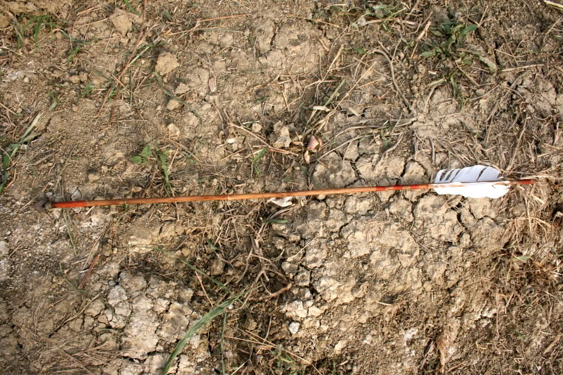 Flecha con punta de sílex. IMG_8235