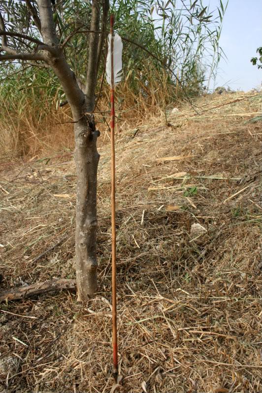 Flecha con punta de sílex. IMG_8238