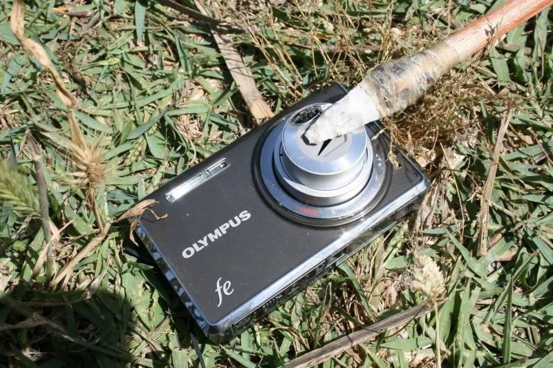Flecha hecha con junco  IMG_9064