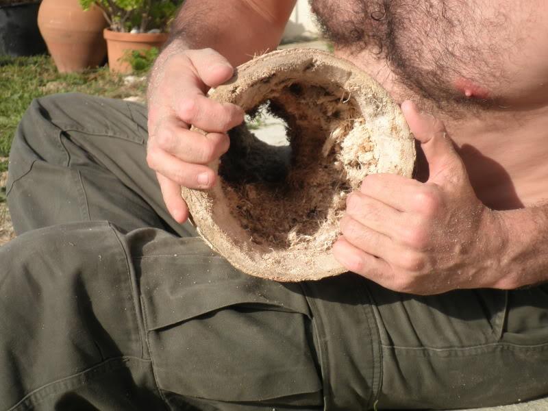 Intento de tambor (preparándome para la próxima quedada) P3260042