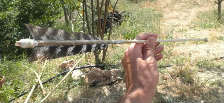 Flecha hecha con junco  P6210233-1