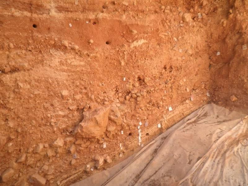 Visita a Atapuerca P9150064