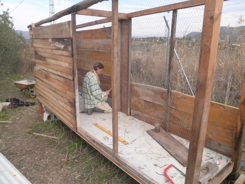 Montando el gallinero, por fin. PC170050-1