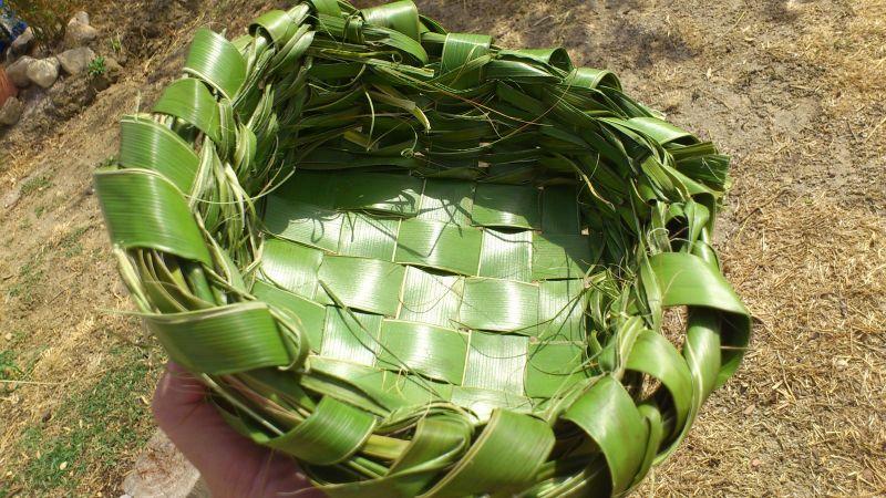 Cestos y plato con hojas de plamera DSC_0900