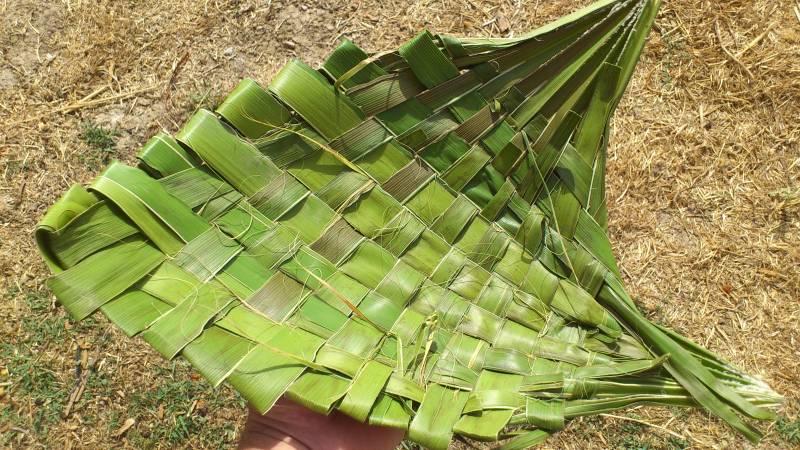 Cestos y plato con hojas de plamera DSC_0904