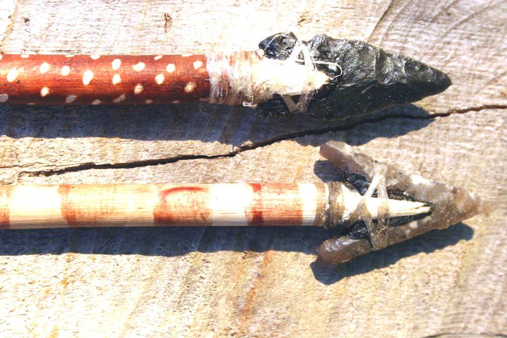 Un par de flechas nuevas IMG_9980_zps5bcc85f5-1_zpsb32cf18c