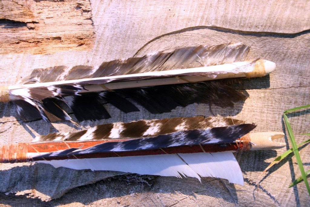 Un par de flechas nuevas IMG_9981_zpsfa7e98d4-1_zpse6ffeb00