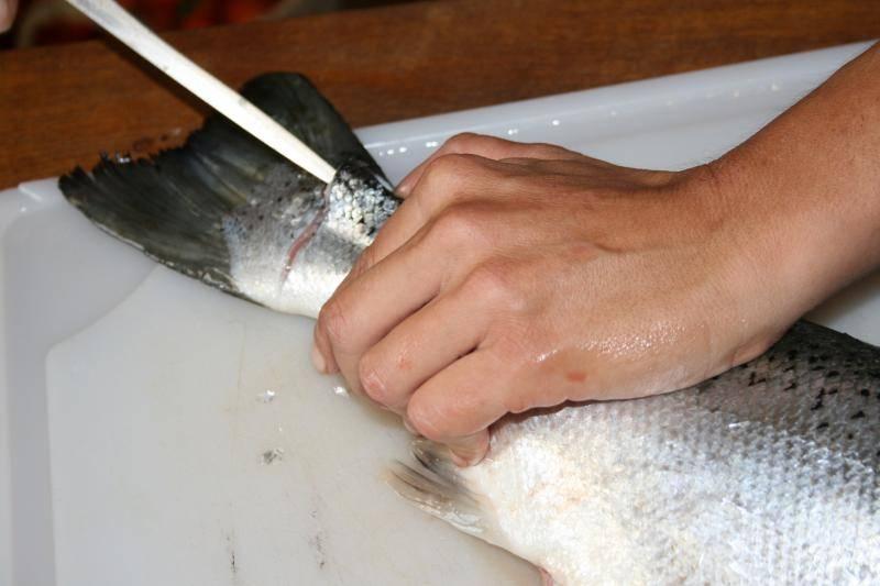 Curtido de piel de salmón. IMG_0933_zps6d7dbe64