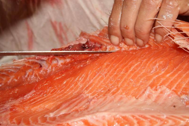 Curtido de piel de salmón. IMG_0995_zpsd651e3b9