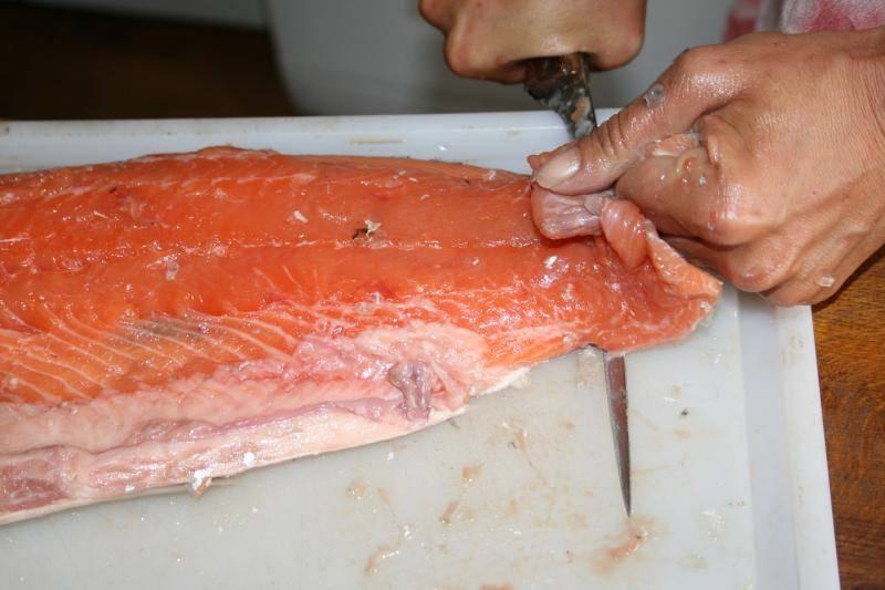 Curtido de piel de salmón. IMG_1005_zps041bb1f2
