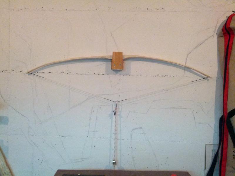 Nuevo forero y nuevo arco Arc1tillering4_zps264da6ad