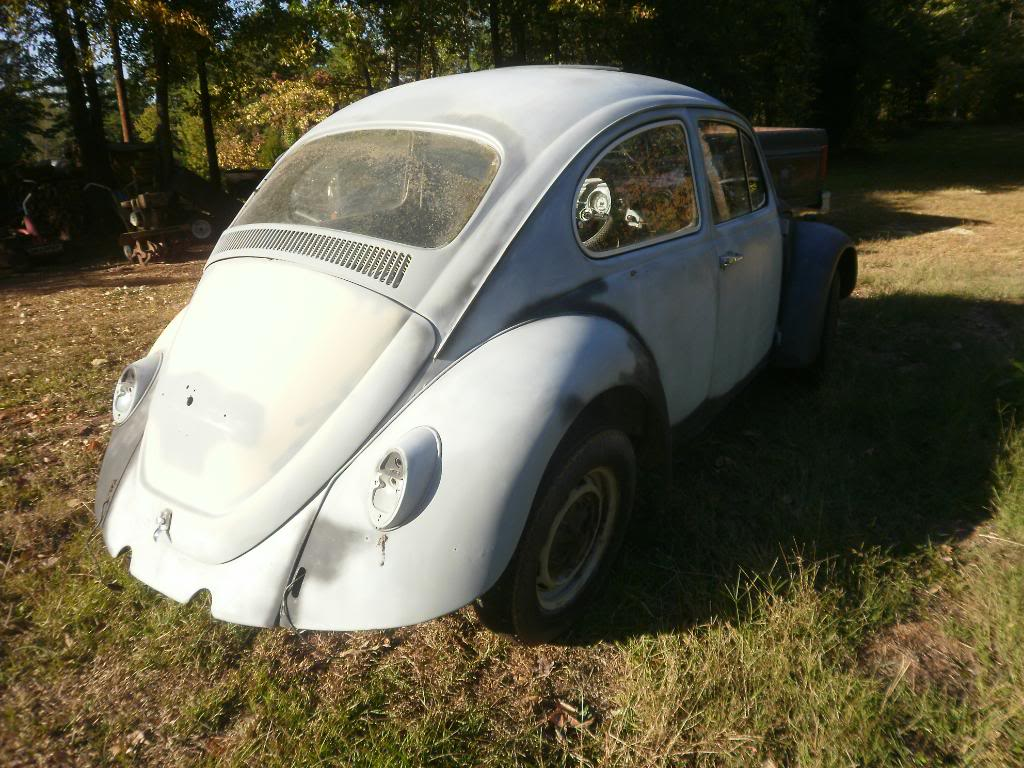Madde the 67 beetle Projects022