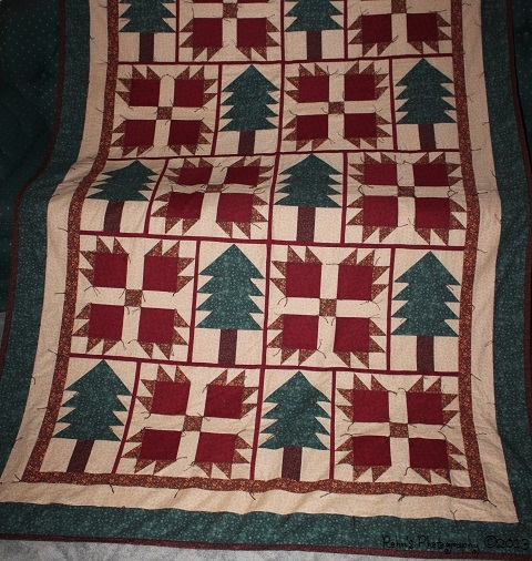Two New Quilts IMG_7257R_zps40c98ba1