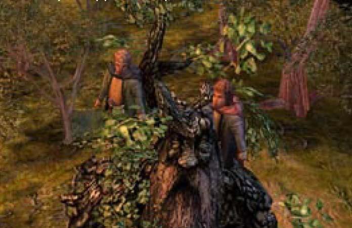 LOTR La Batalla por la Tierra Media II 15