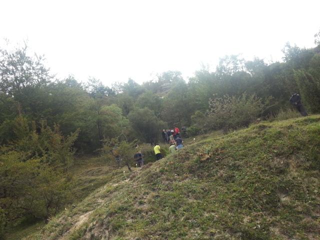 Macro Event Vitoria-Gasteiz 20130928_114423