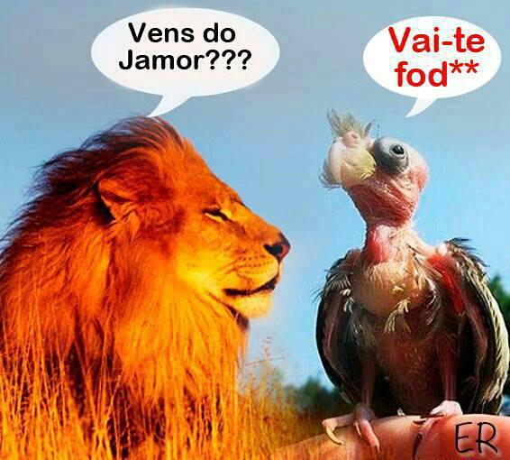 Ser Lampião... - Página 2 954658_4871362431279_988954474_n_zps61a958f2