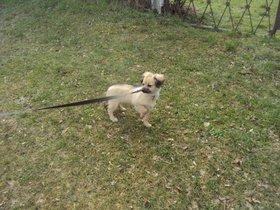 lady  20/10/2012 Bth_DSC08387_zpsc19a98d7