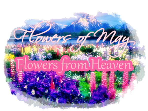 Month of May: Flowers from Heaven Event1