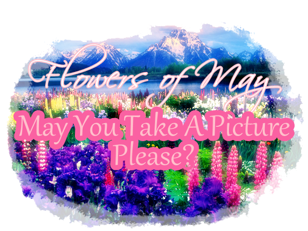 Month of May: May You Take A Picture Please? Event3