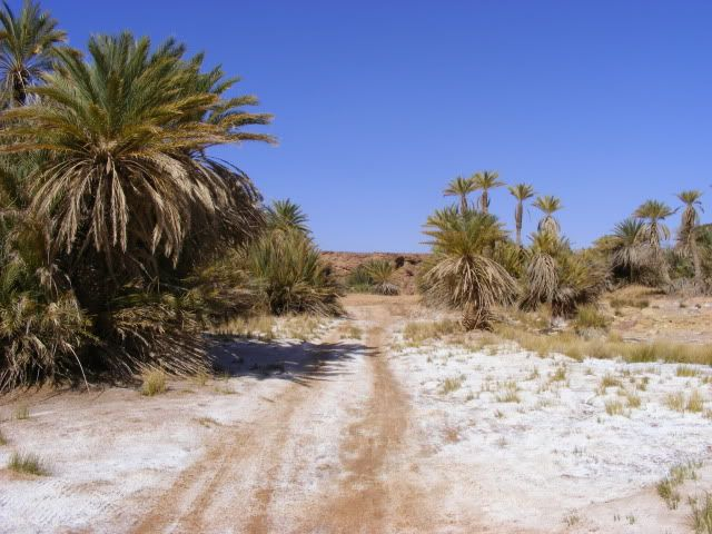 morocco again,,,,, DSCF5993