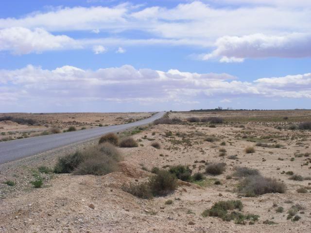 North East Morocco? - Page 6 DSCF7948_zpsb16f461a