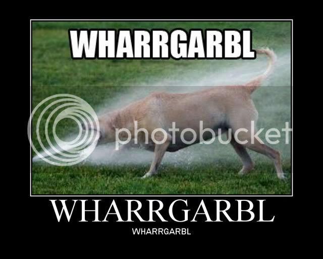 Thirsty dog & Widedog Wharrgarbl