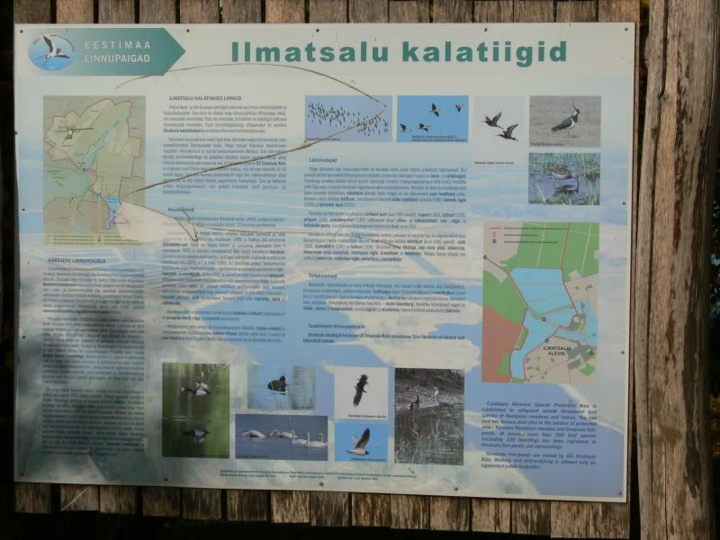 Robin`s South-Estonia trip (and Caysa's pics following too) P1390509