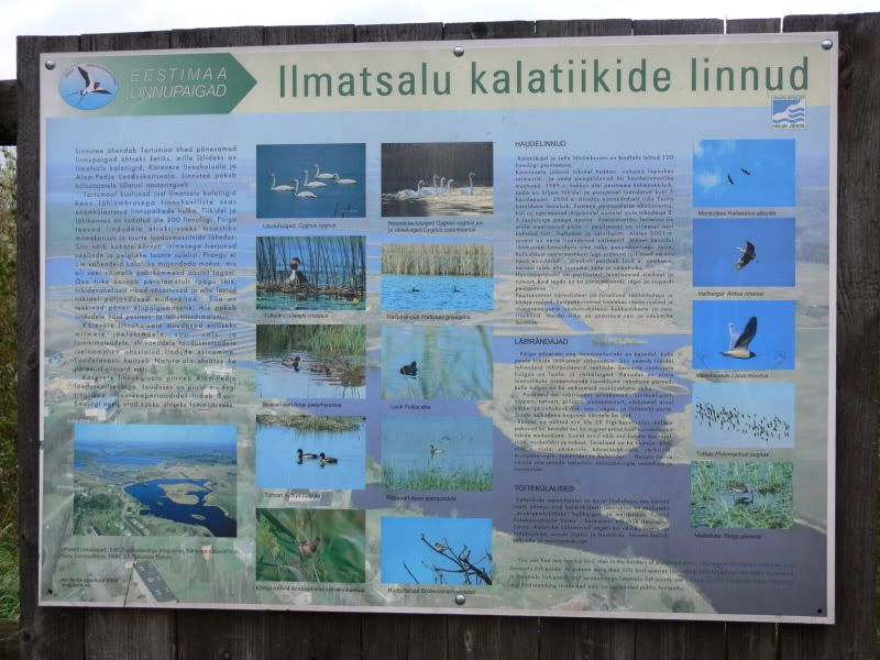Robin`s South-Estonia trip (and Caysa's pics following too) P1390739