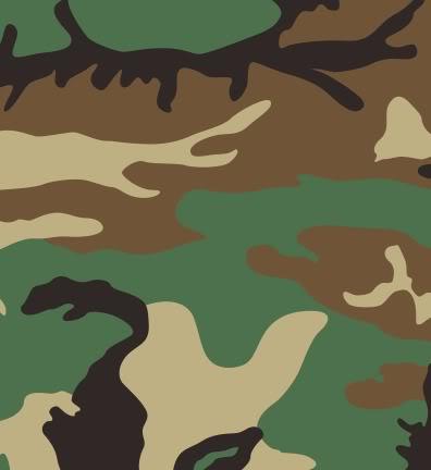 تجهيزات و ملابس الجندي العراقي 396px-US_Woodland_pattern_svg