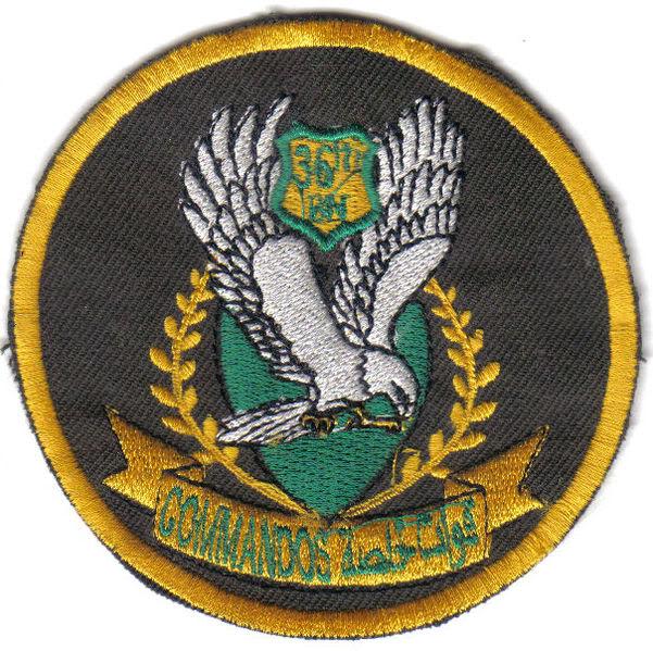 دلتا فورس العراقية صور و فيديو و شرح 601px-36th_CDO_BN_unit_patch