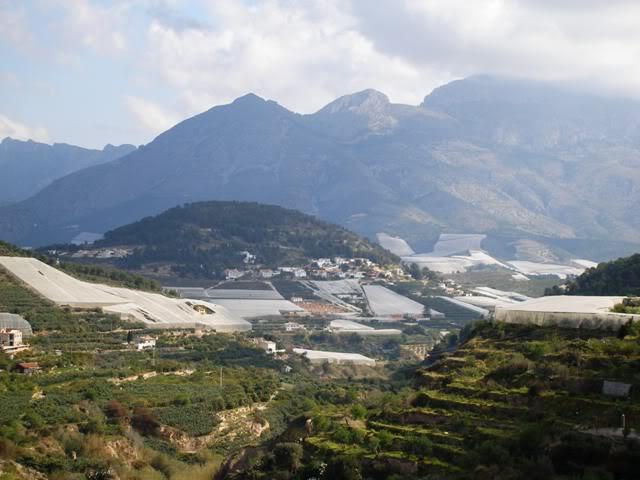 el monte alicantino y el rastro de La Nucia P3222670