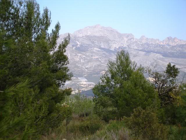 el monte alicantino y el rastro de La Nucia P3222681