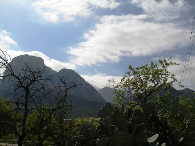 el monte alicantino y el rastro de La Nucia P3222682