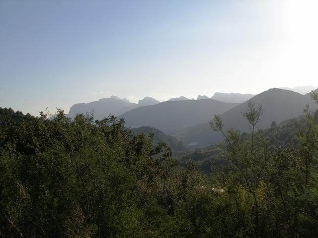el monte alicantino y el rastro de La Nucia P3222685