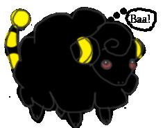 A lone sheep BlackMareep