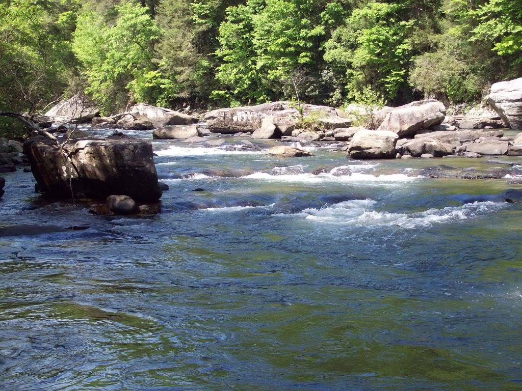 meadow river wv Picture001-5