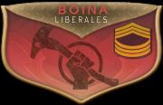 Boina:Liberales