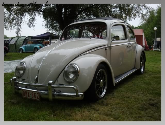 Beetle at the beach, nuenen, eindhoven DSC01236