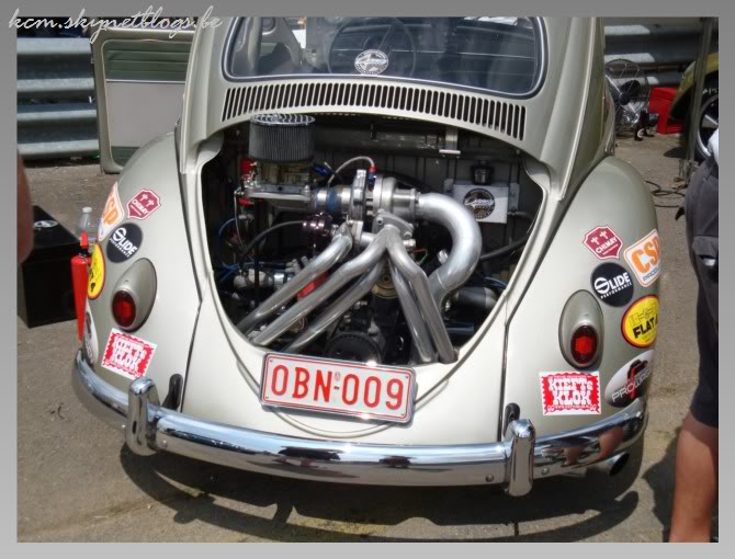 EBI European Bug in 2009 DSC02187