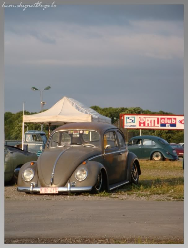 EBI European Bug in 2009 DSC02242