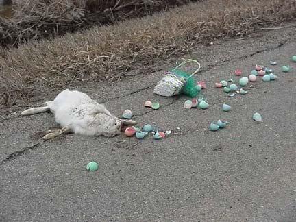 FELIZ PASCOA!!! Easter_bunny