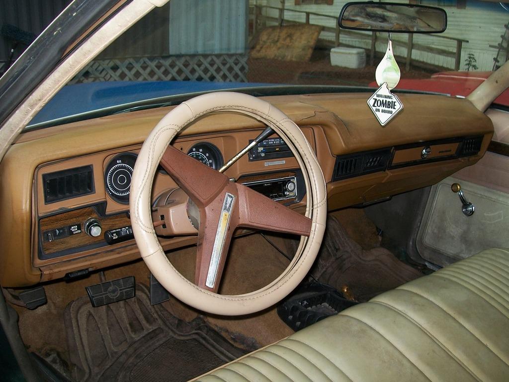 1976 & 1977 Pontiac Lemans Coupes for sale. Panama City, FL 100_6785