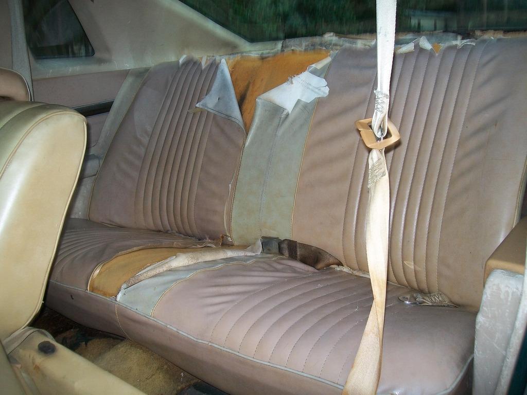 1976 & 1977 Pontiac Lemans Coupes for sale. Panama City, FL 100_6787