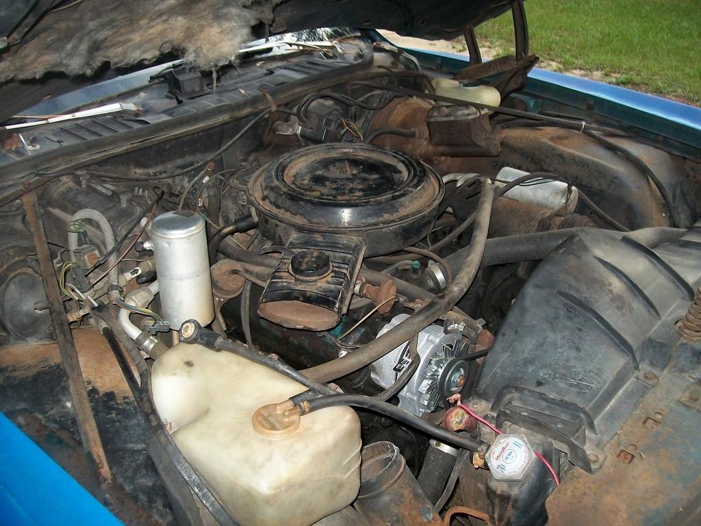1976 & 1977 Pontiac Lemans Coupes for sale. Panama City, FL 100_6788