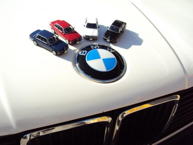 TLV-N91/93: BMW E30 Coupe/Sedán. DSC04202_zps72e4760d